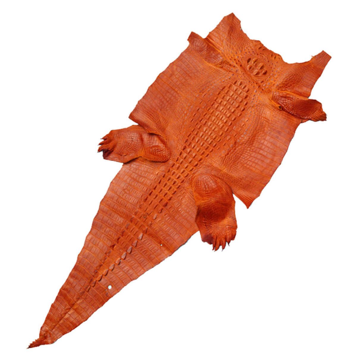 Da cá sấu thuộc S1221b
