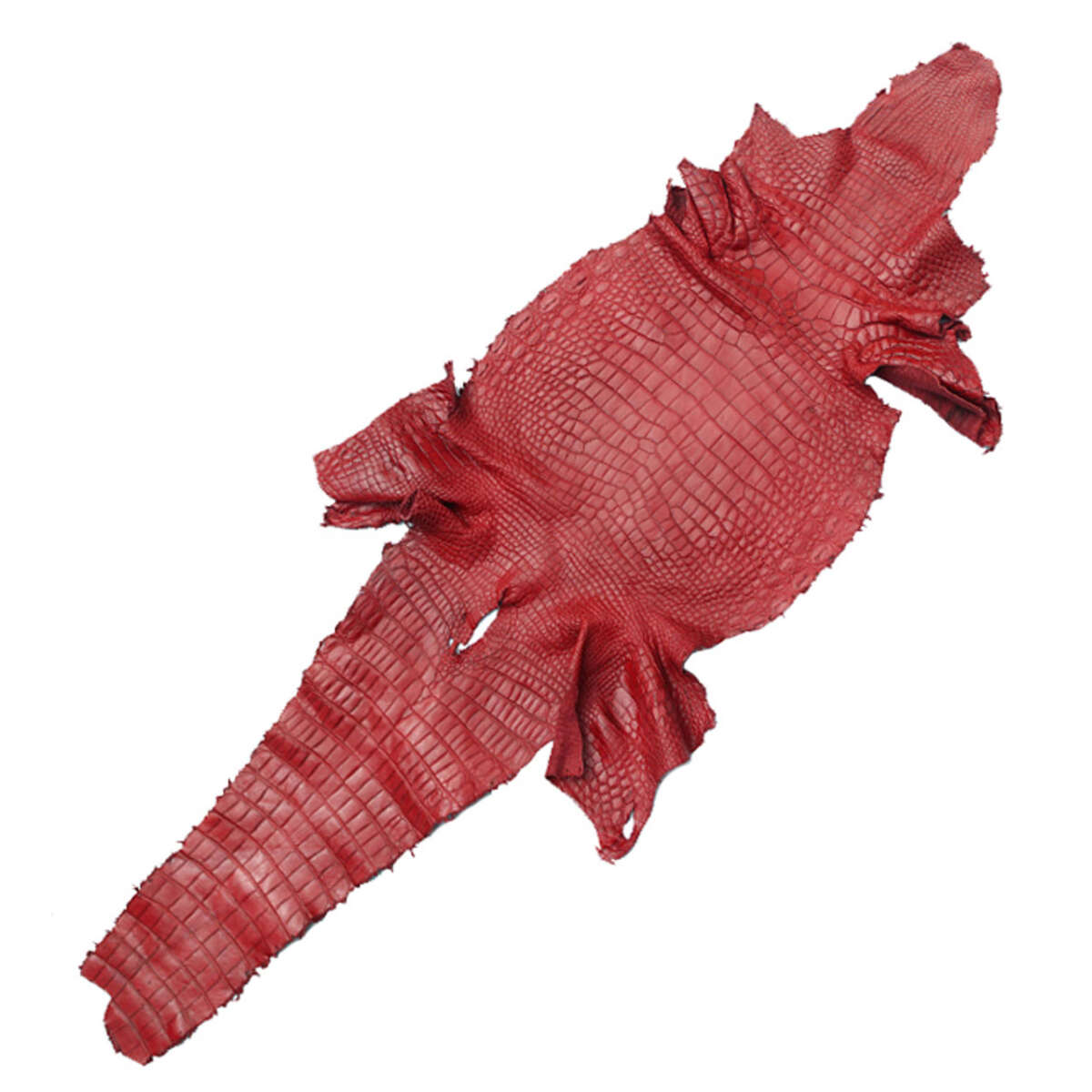 Da cá sấu thuộc S1222b